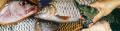 Aquaculture Feede