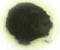 Tellurium Metal Powder