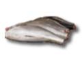 Fresh Chilled Big Eye and Yellow Fin Tuna
