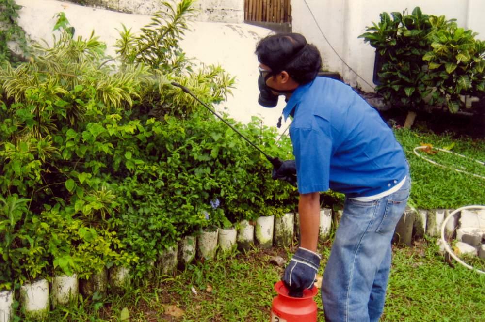Order General Pest Control Spraying
