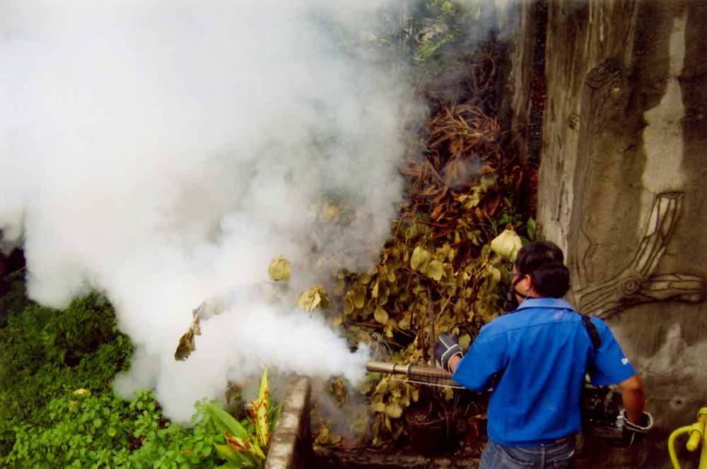 Order General Pest Control Fogging