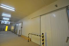 Repair and Maintenance of Cold Room Doors