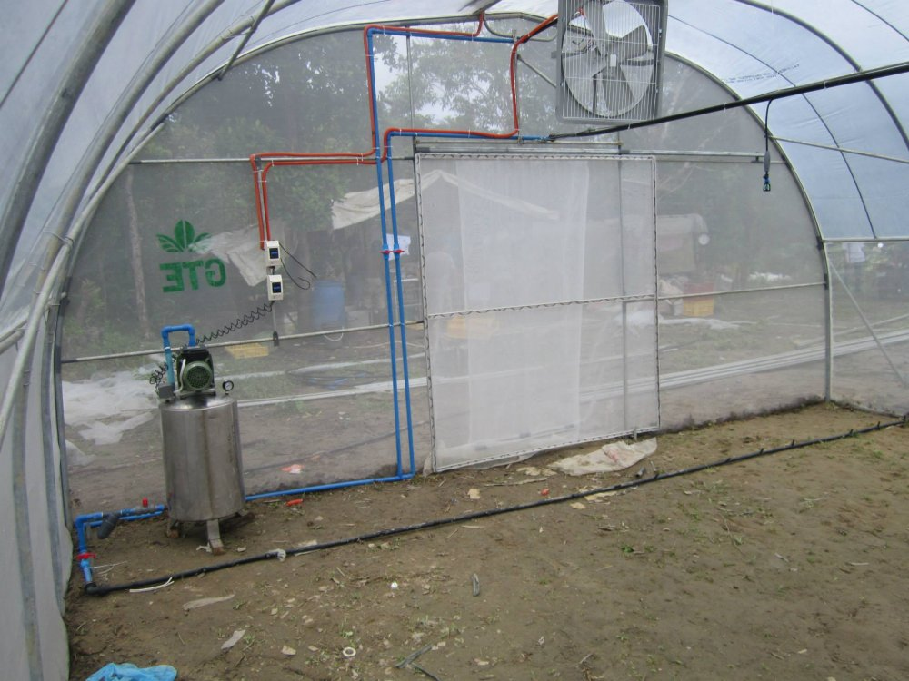 greenhouse_repair_upgrade_and_modifications